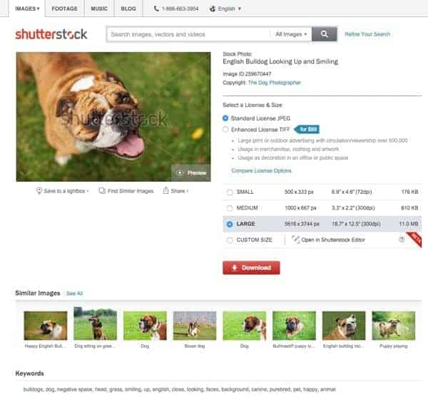 Shutterstock, photo search, computer vision