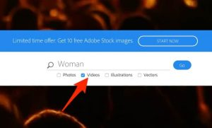 search-adobe-stock-video