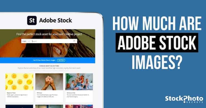 how much adobestock images > How Much Are Adobe Stock Images? - Your Questions Answered!