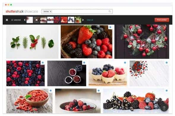 Refine Berries > Shutterstock Improves Search with New AI Plugin and Showcase Site