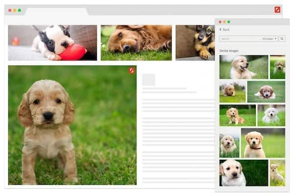 Reveal Extension preview > Shutterstock Improves Search with New AI Plugin and Showcase Site