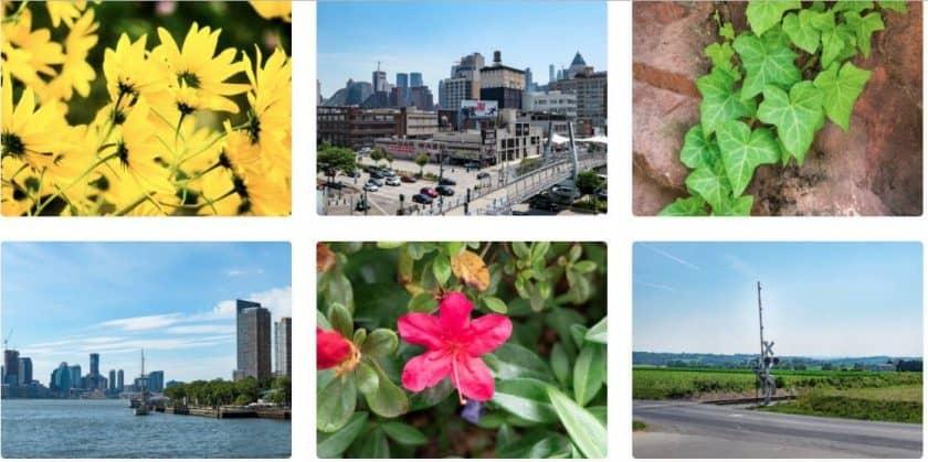 27+ nejlepších free fotobank s fotkami zdarma pro rok 2020! 18