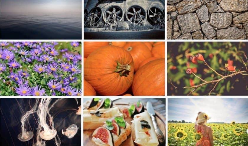 Pixabay Screenshot > The 27+ Best Free Stock Photo Sites in [wpsm_custom_meta type=date field=year]!