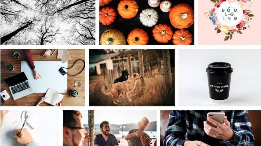 Rawpixel Screenshot > The 27+ Best Free Stock Photo Sites in 2020!