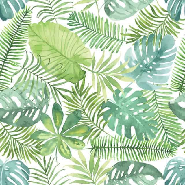 Adobe Stock Most Downloaded Seamless Pattern Watercolor Tropical Leaves
