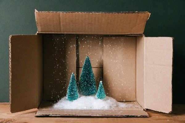 Diorama Pine Trees Snow Cardboard Box