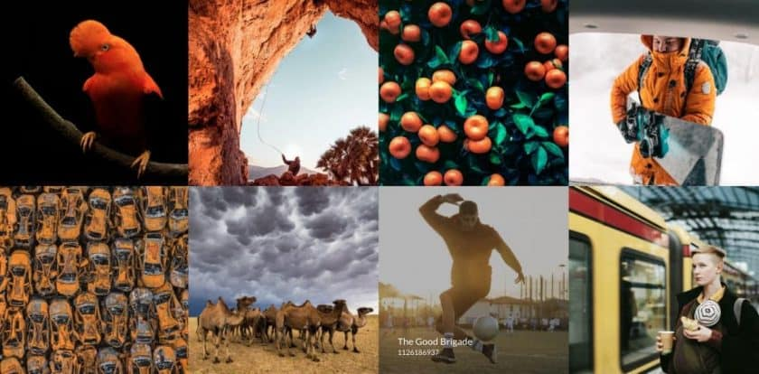 Getty Images Creative Sample 1 > Getty Images is Dropping Rights Managed Licensing in 2020