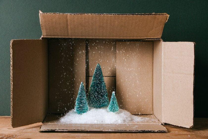 Borovice se sněhem uvnitř lepenkové krabice