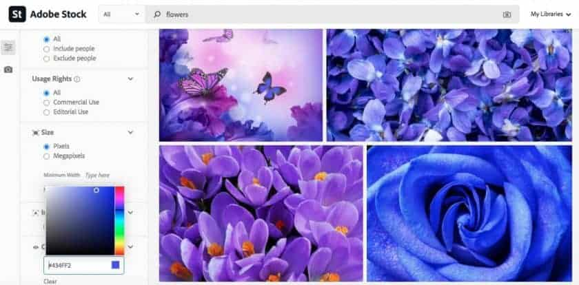 Adobe Stock Color Filter > The Best Color Combinations for Brands (Psychology of Color in Stock Photography)