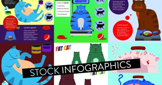 Stock Infographics Header > How to Find and Buy Stock Photos