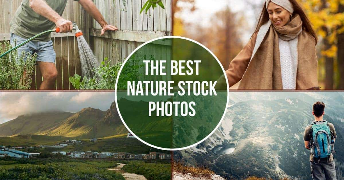 nature stock photos header > The Best Nature Stock Photos to Inspire your Audience