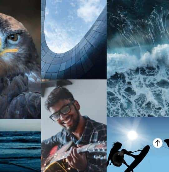 Color trends 2021 cool > The Stock Photo Color Trends Report by Everypixel