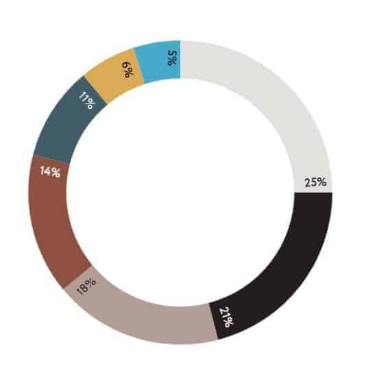 Color trends 2021 general stats wheel > The Stock Photo Color Trends Report by Everypixel