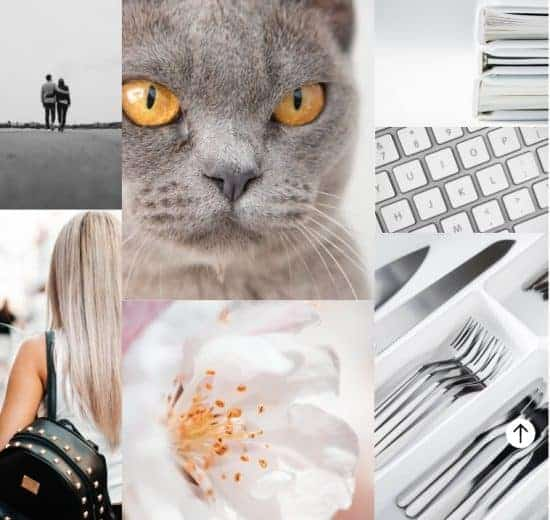 Color trends 2021 gray > The Stock Photo Color Trends Report by Everypixel