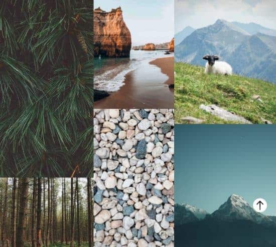 Color trends 2021 nature > The Stock Photo Color Trends Report by Everypixel