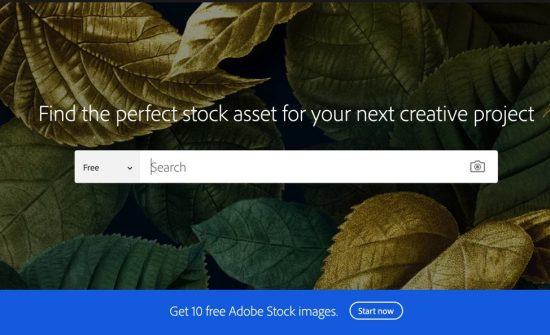 F8FFA758 F70C 4F90 A616 3AF665DA083E > How Much Are Adobe Stock Images? - Your Questions Answered!