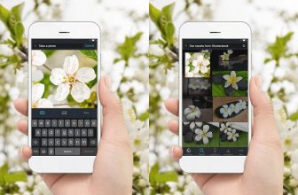 Shutterstock's Reverse Image Search is Now Available for Mobile