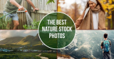 The Best Nature Stock Photos to Inspire your Audience